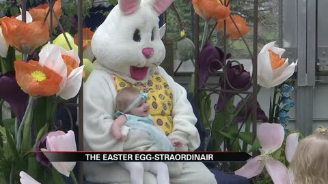 Linton's Enchanted Gardens holds Easter Egg-Straordinair